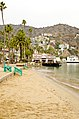 Catalina Island and Ensenada Cruise - panoramio (75).jpg