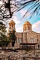 "Catedrala ortodoxă ""Sf. Apostoli Petru și Pavel"" de sub brad.jpg"