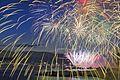 Celebration Of Light by Team USA - Disney 2016 (28666819605).jpg
