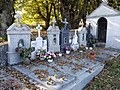 Cemiterio de Axulfe – graves 2017-1.jpg