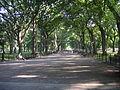 Central Park (8403841312) (2).jpg