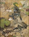 Chaffinches and Dragonflies. Five studies in one frame, NM 2223-2227 (Bruno Liljefors) - Nationalmuseum - 19284.tif