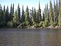 Charley River Water Quality Testing, Yukon-Charley Rivers, 2003 8 (535eea94-396d-44e4-ae6f-c22428701d33).jpg