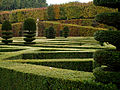 Chateau de Villandry jardin topiaire.jpg