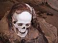 Chauchilla Cemetery skull.jpg