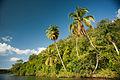 Chavón River banks. Casa de Campo, Altos de Chavón (historical village), La Romana, Dominican Republic (1).jpg