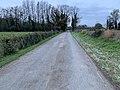 Chemin Rollière - Crottet (FR01) - 2020-12-03 - 1.jpg