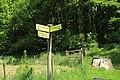 Chemin sous Vertcœur à Milon-la-Chapelle le 18 mai 2015 - 1.jpg