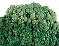 Chrysocolla-Malachite-uri-39c.jpg