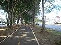 Ciclovia na florestinha - Atilio Martini - panoramio.jpg