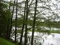 File:Cihlářský rybník (Vlkovsko).webm