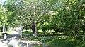 Circular-Park, Yerevan 01.jpg