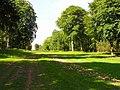 Cirencester Park - geograph.org.uk - 457244.jpg