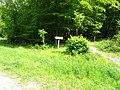 Clairmarais.- Forêt domaniale de Rihoult Clairmarais (4).jpg