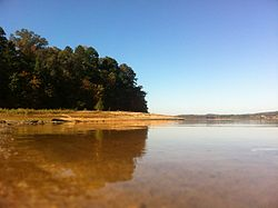 A view from Lake Hartwell of the Clemson Experimental Forest