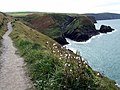 Coast path south of Ceibwr - geograph.org.uk - 541966.jpg