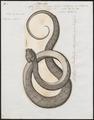 Coluber argus - 1700-1880 - Print - Iconographia Zoologica - Special Collections University of Amsterdam - UBA01 IZ11800203.tif