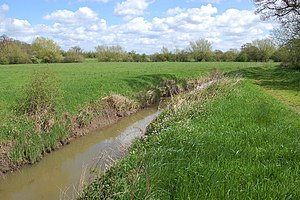 Coombe Hill Canal - Coombe Hill nature reserve