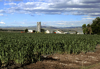Economy of Colorado - Image: Corn production in Colorado