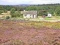 Cottage at Ellercarr - geograph.org.uk - 547590.jpg