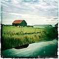 Country barn (6342953276).jpg