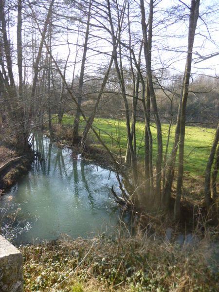 Courtenay, Loiret, Centre region, France. Upstream from Courtenay, looking south-west: the Clairis river, or Clairie, receiving its tributary the ru de Piffonds(the latter coming from under the bridge on the left on the photo).