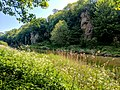 Creswell Gorge, Creswell Craggs, Notts (28).jpg