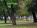 Curico, alameda (13882537394).jpg