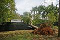 Cyclone Helen 3975.jpg