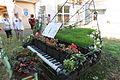 Décor floral autour du thème de la musique - Kienheim , village fleuri , en Alsace.jpg