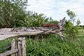 Dülmen, Weide am Naturschutzgebiet -Welter Bach- -- 2014 -- 0026.jpg