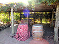 DSC24930, Viansa Vineyards & Winery, Sonoma Valley, California, USA (6406994471).jpg