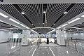 Daqing Bridge Station, 2020-12-26 03.jpg