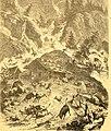 Das Thierleben der Alpenwelt - Naturansichten und Thierzeichnungen aus dem Schweizerischen Gebirge (1865) (20219550223).jpg