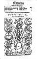 De omnibus humani corporis interioribus membris Anathomia Wellcome L0000058.jpg