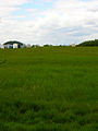 Deanland Airfield - geograph.org.uk - 177466.jpg