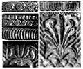 Designs on Pataliputra capital.jpg
