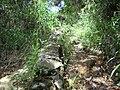 Detail just before the Pedra do Queijo^^^ - PARNASO - panoramio.jpg