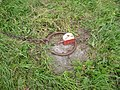 Detail van achtkante grondzeiler - AMR Molenfoto - 20539618 - RCE.jpg