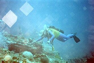 RMS Rhone - Diver exploring RMS Rhone