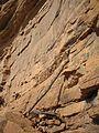 Dogon ladder by David Sessoms.jpg