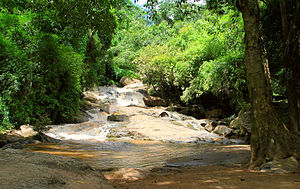 Doi Suthep–Pui National Park - Mae Sa waterfall
