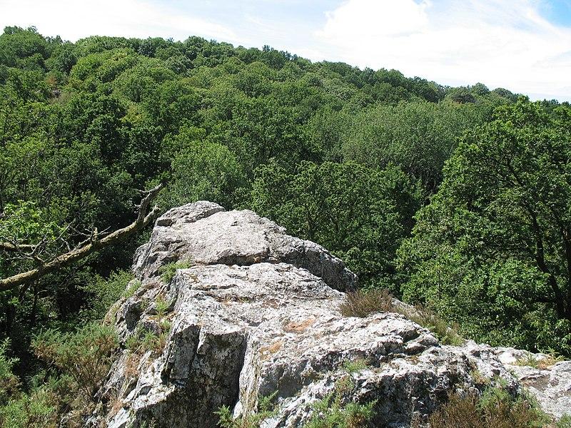 Les falaises de Saut Roland à Dompierre-du-Chemin. Espace naturel départemental et site officiel d'escalade.