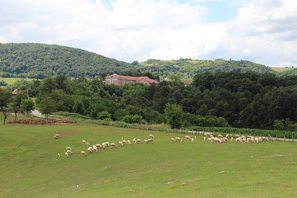 Dračić - opština Valjevo - zapadna Srbija - panorama 19