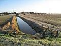 Drainage Ditch near Ewhurst Green - geograph.org.uk - 1016242.jpg