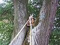 Drewniaka kapliczka mazowiecka2.JPG