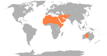 Global range of the dromedary