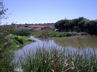 Dry Creek, South Australia Suburb of Adelaide, South Australia