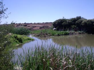 Dry Creek, South Australia - Barker Inlet wetlands at Dry Creek