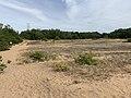 Dunes Charmes Sermoyer 2.jpg